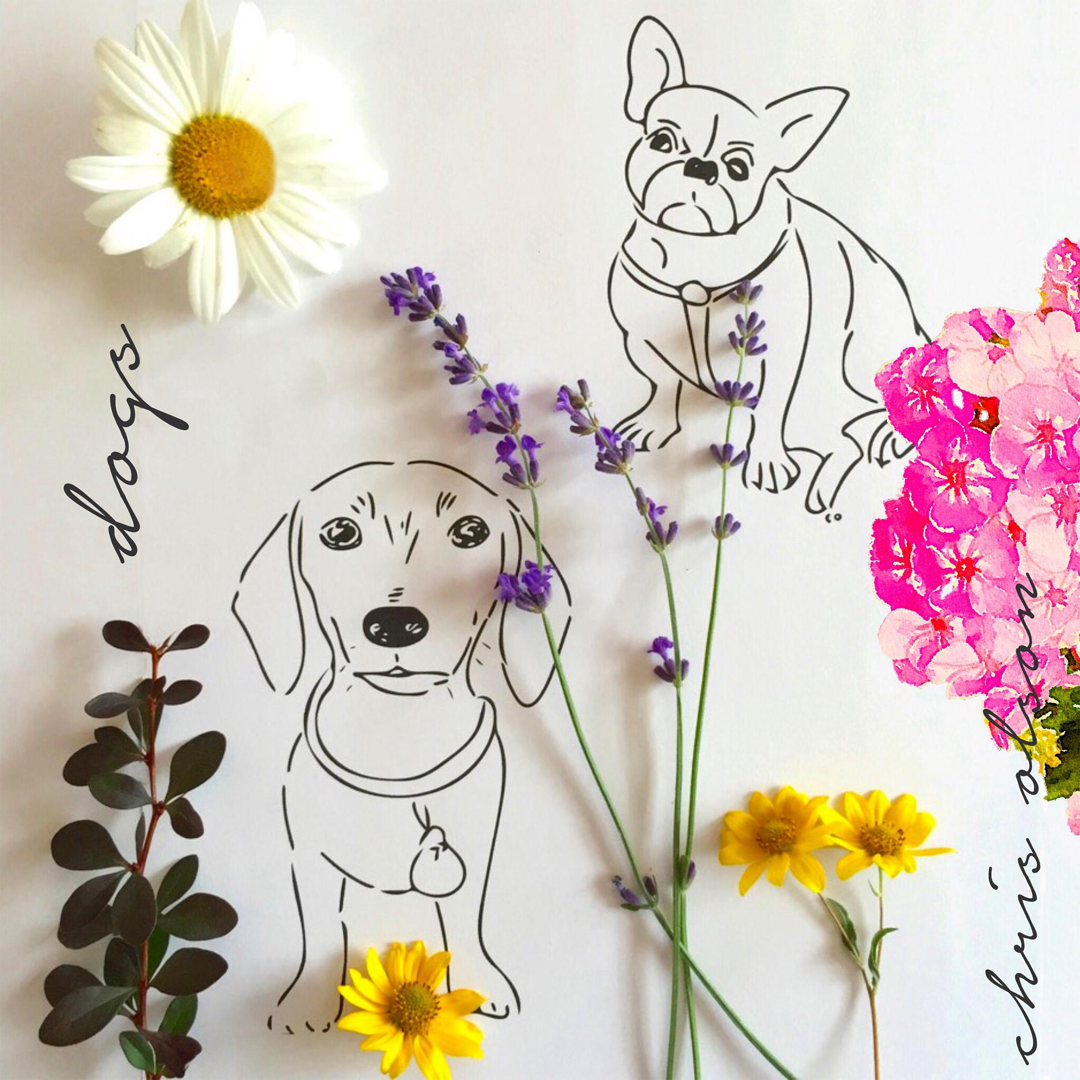 Dachshund and French Bulldog art by Chris Olson