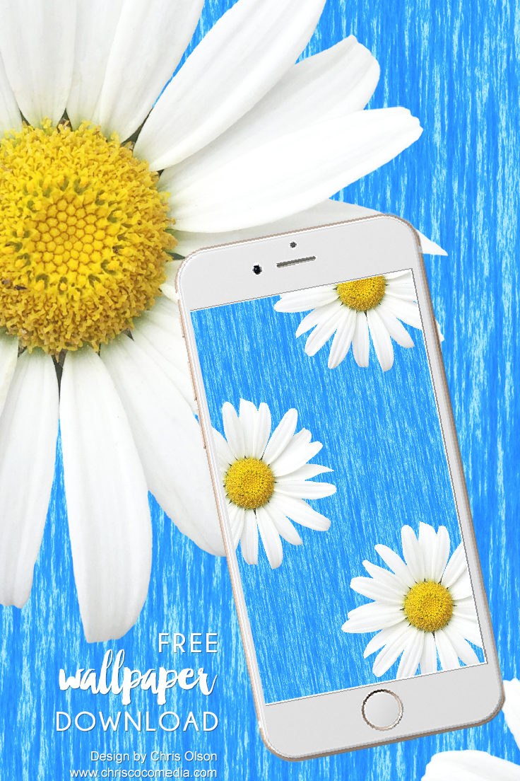 Daisy Wallpaper for you to download for your smartphone. Design by Chris Olson.
