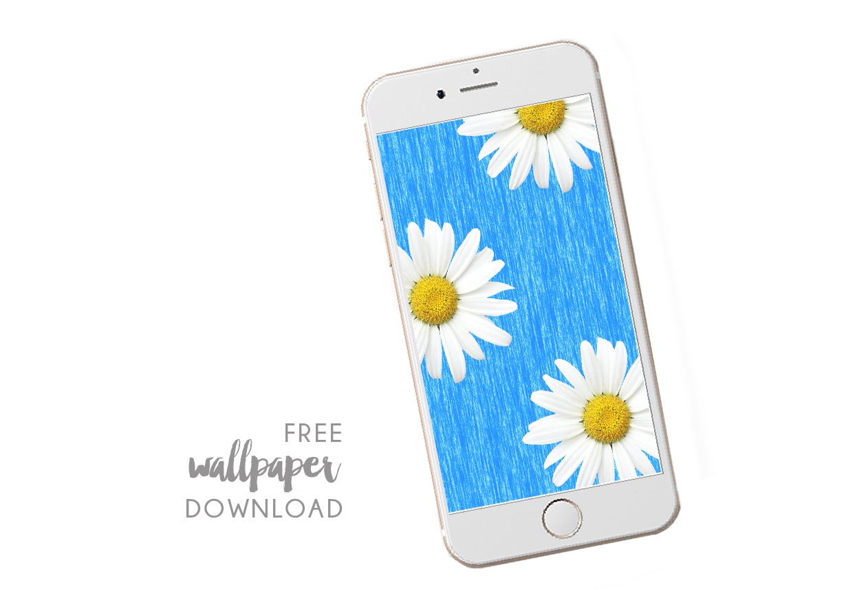 free digital wallpaper - daisy.jpeg