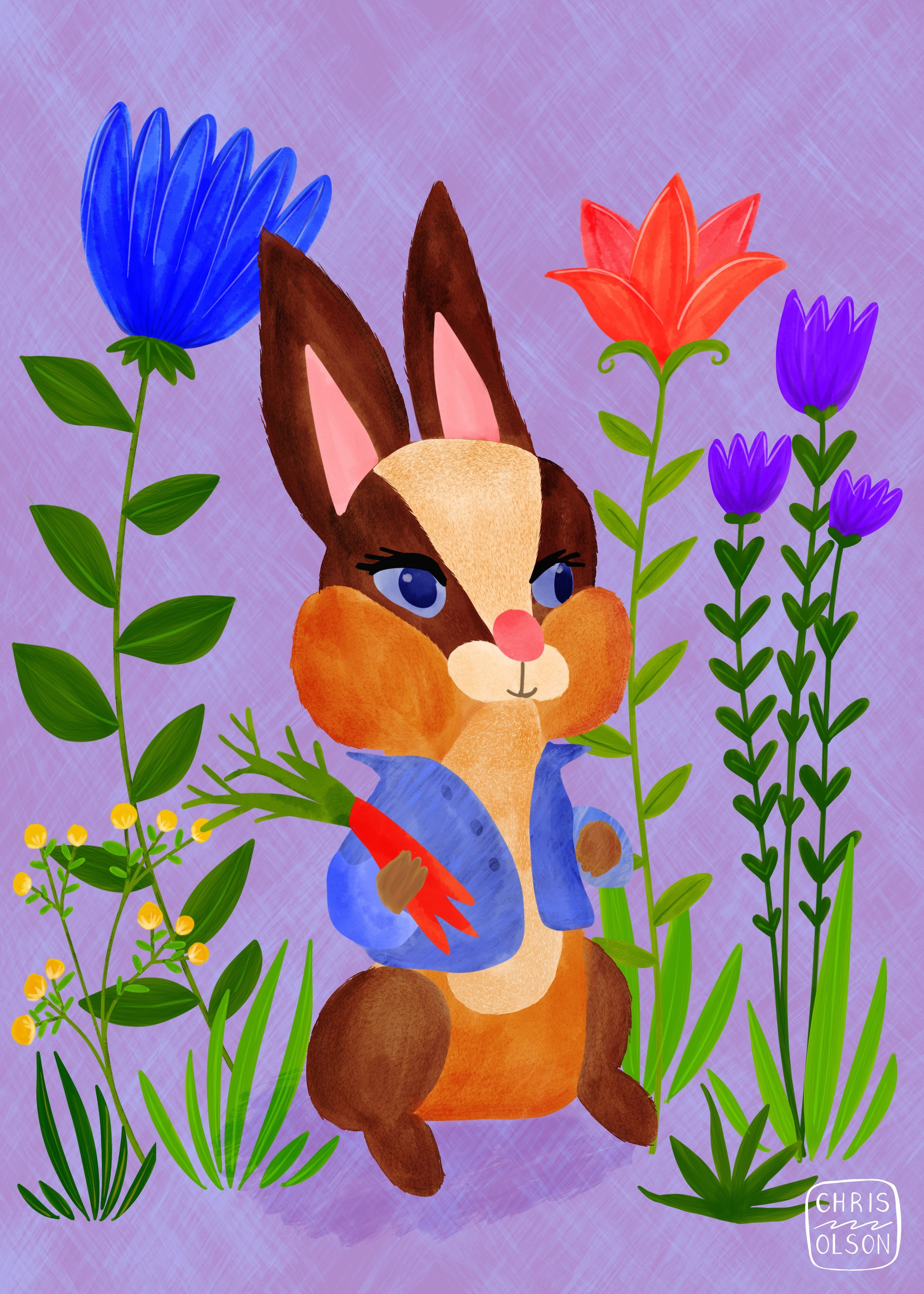 Rabbit illustration by Chris Olson