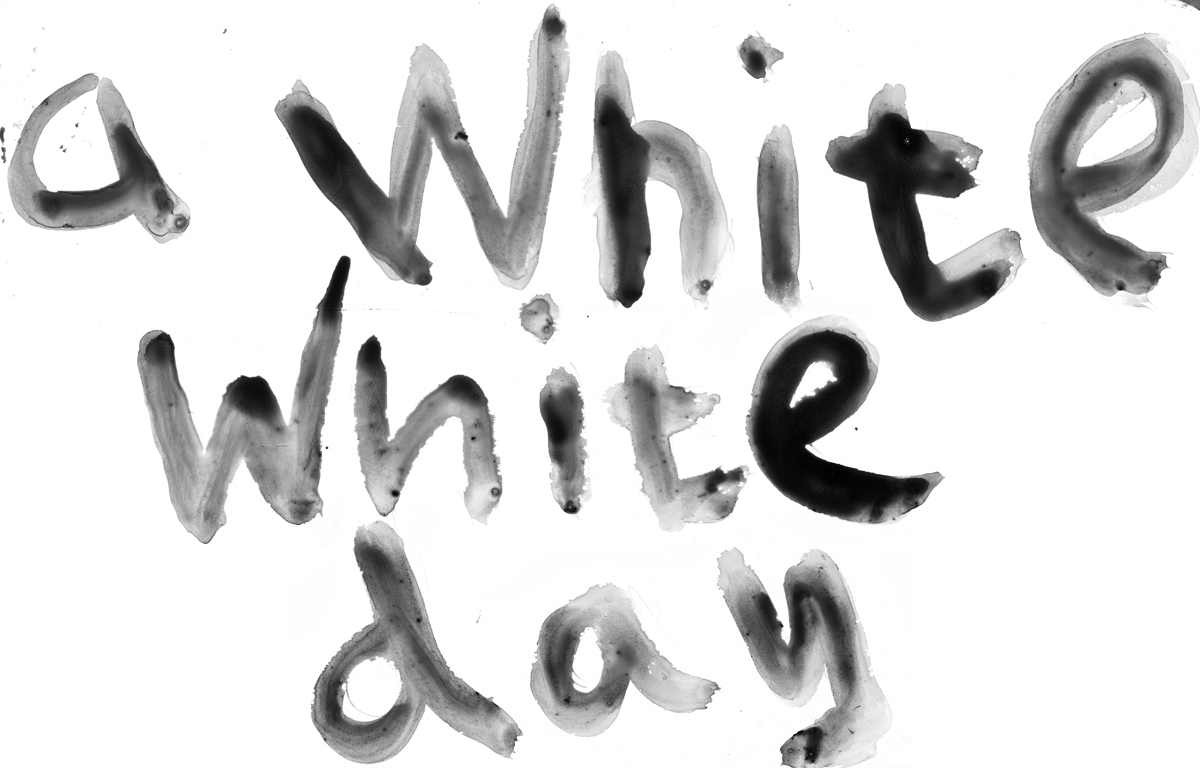 a white white day_1.jpg
