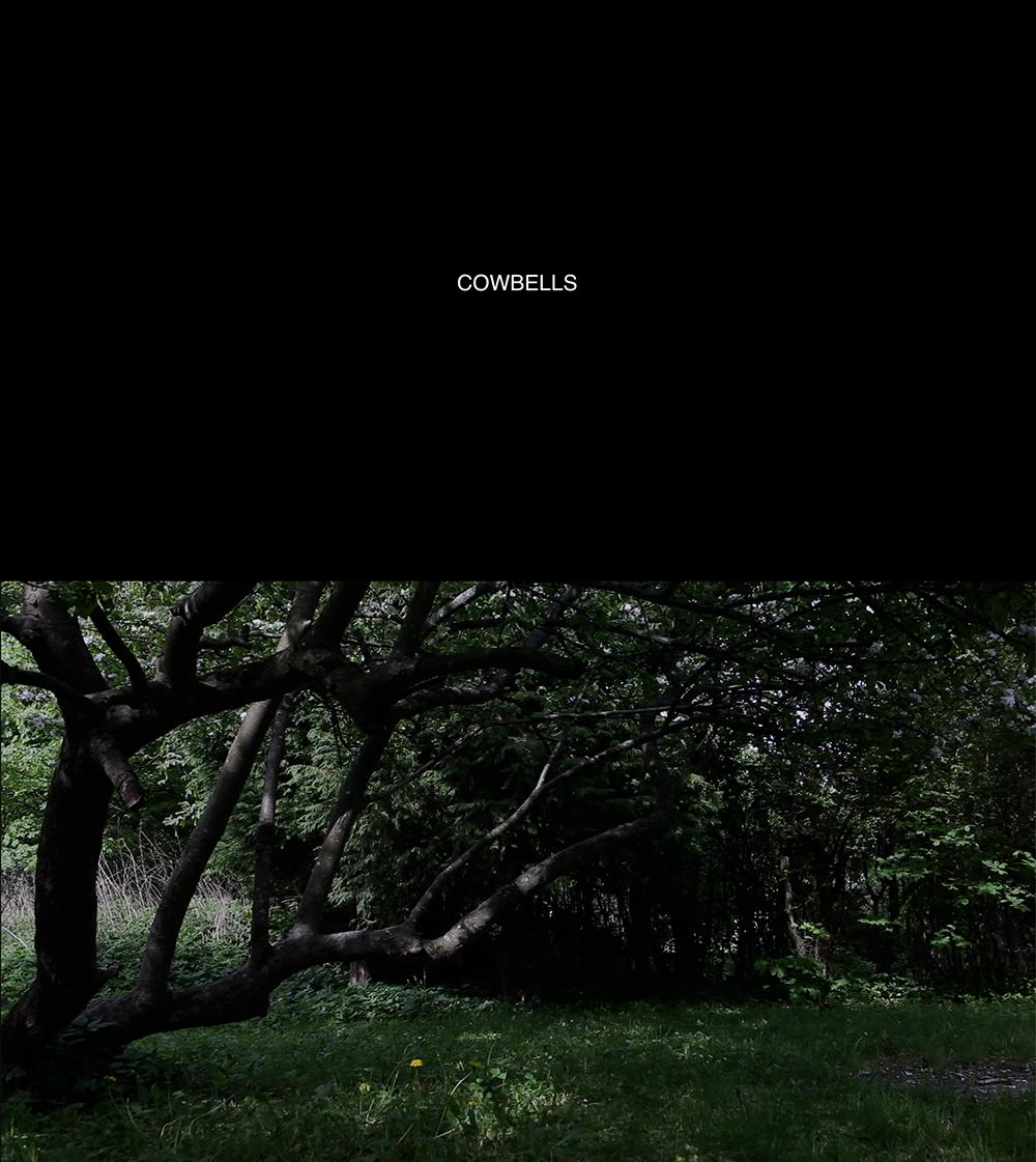 cowbells_homepage.jpg