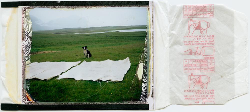 polaroid 100 / tveggja vetra ferli 2# / h.pálmason 2015