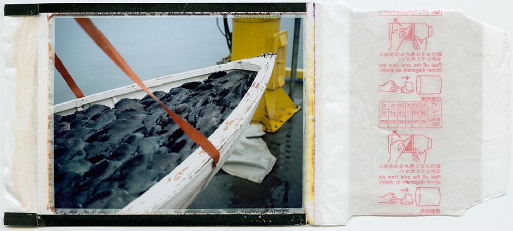 polaroid 100 / 10km í land sería / h.pálmason 2015