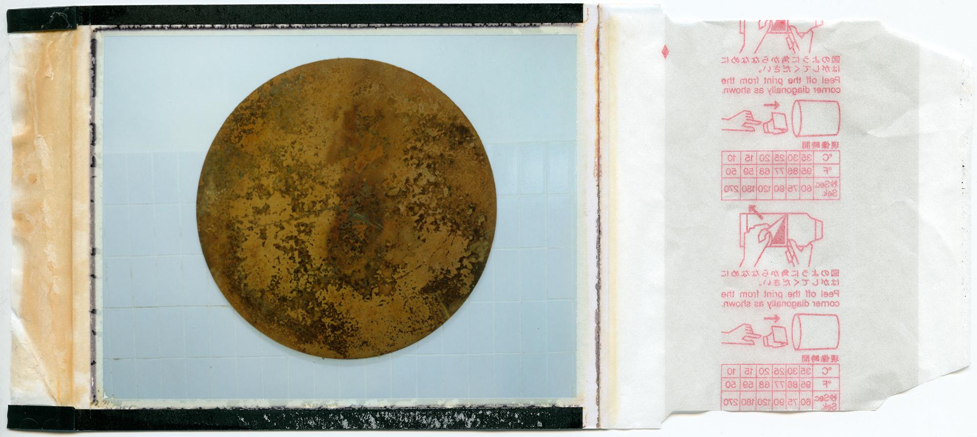 home soil / process 1# / polaroid 100 / h.pálmason 2016