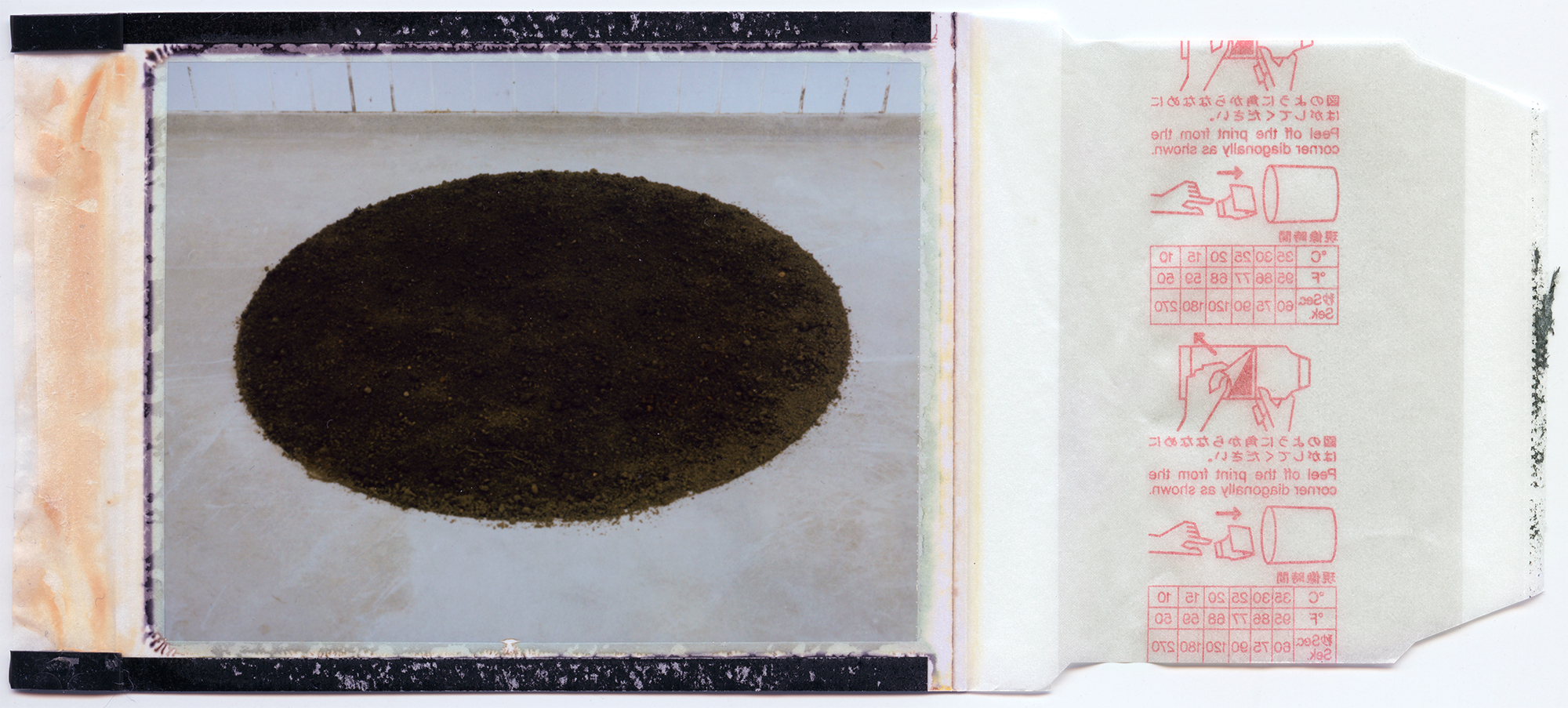home soil / process 3# / polaroid 100 / h.pálmason 2016