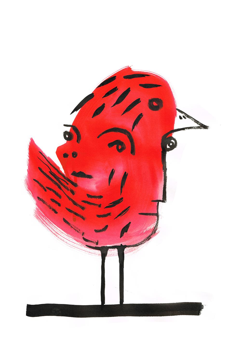 WeAreThe Birds 1web.jpg