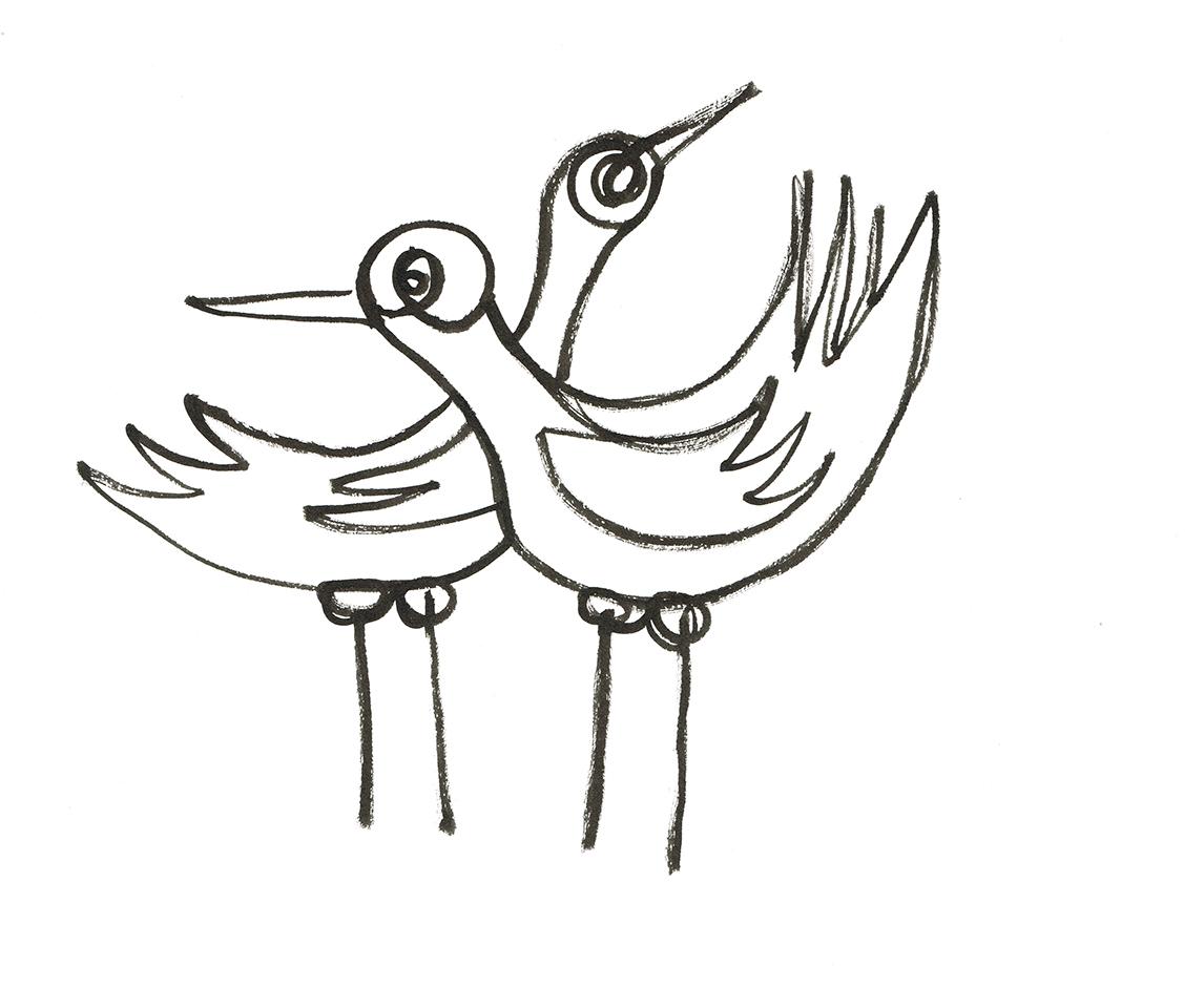 WeAreThe Birds 20web.jpg