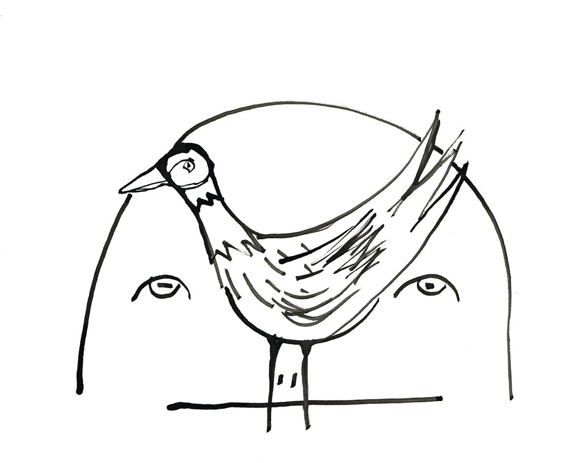 WeAreThe Birds 22web.jpg