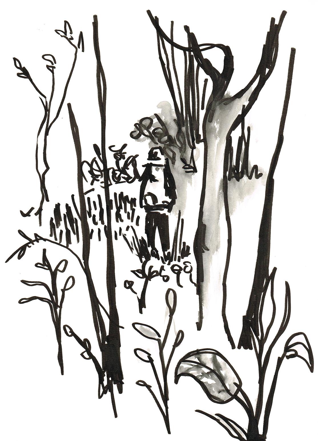 Anna Sketching