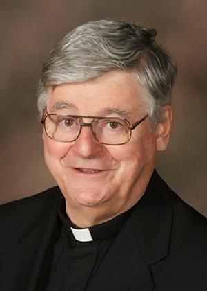 Rev. R. William Sullivan, O.S.A., Vice-Chair