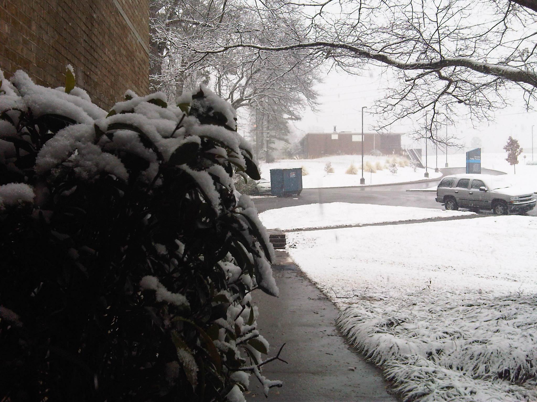 Snow in Anniston, AL on Feb. 12 2010