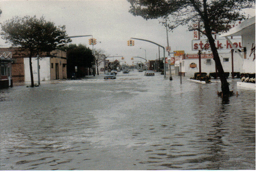 hurricaneglorianewhampshireandbeechst.jpg