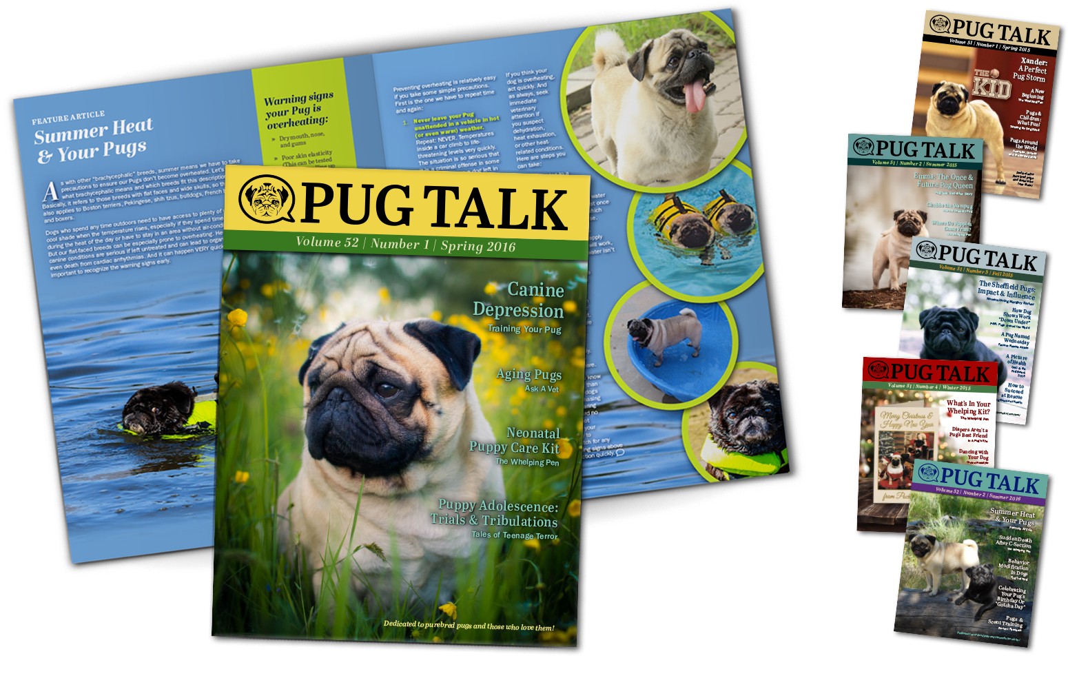 Pug Talk Magazine