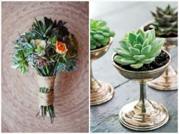 succulents in wedding bouquet and succulent wedding favors