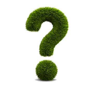 green-bush-question-mark.png