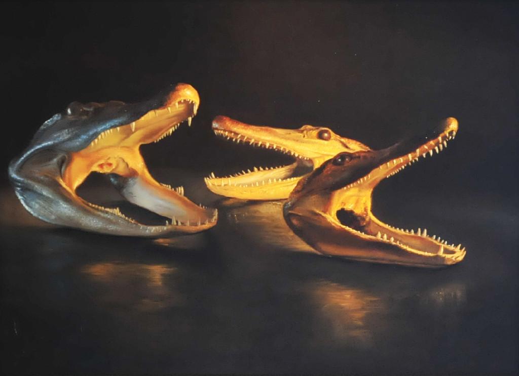 Circle of Alligators