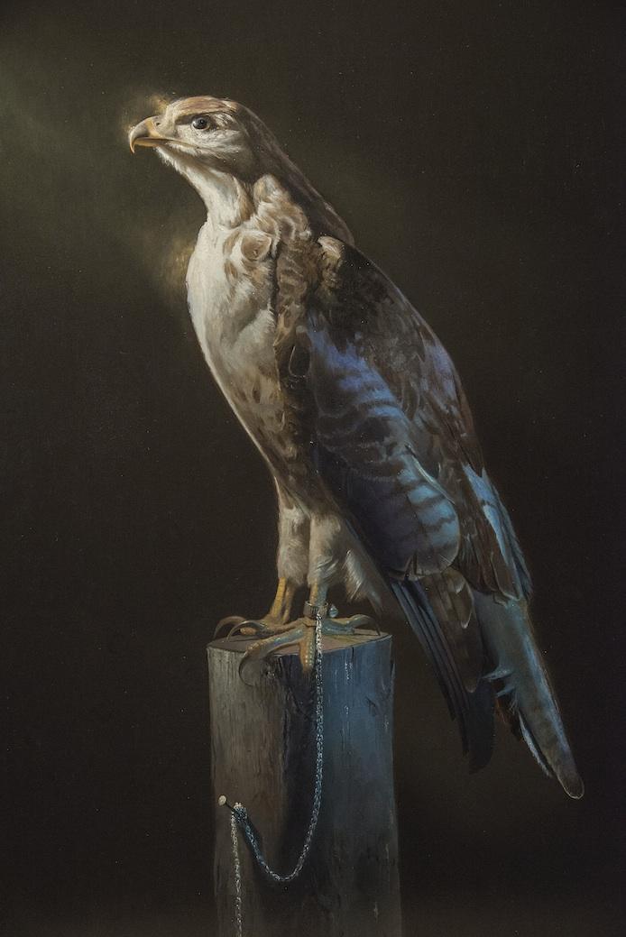 Hawk and Chain