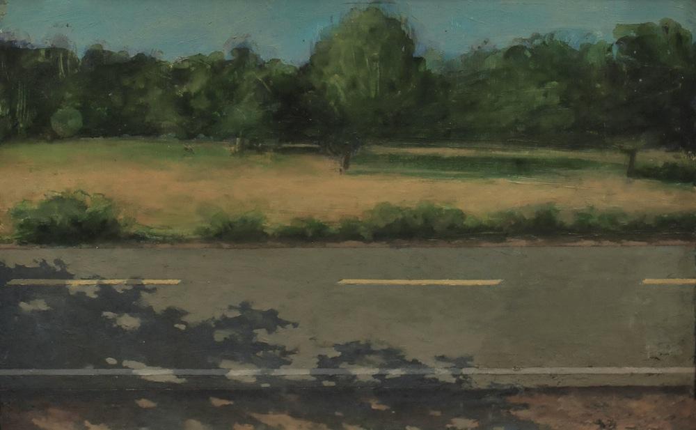 Roadside Landscape