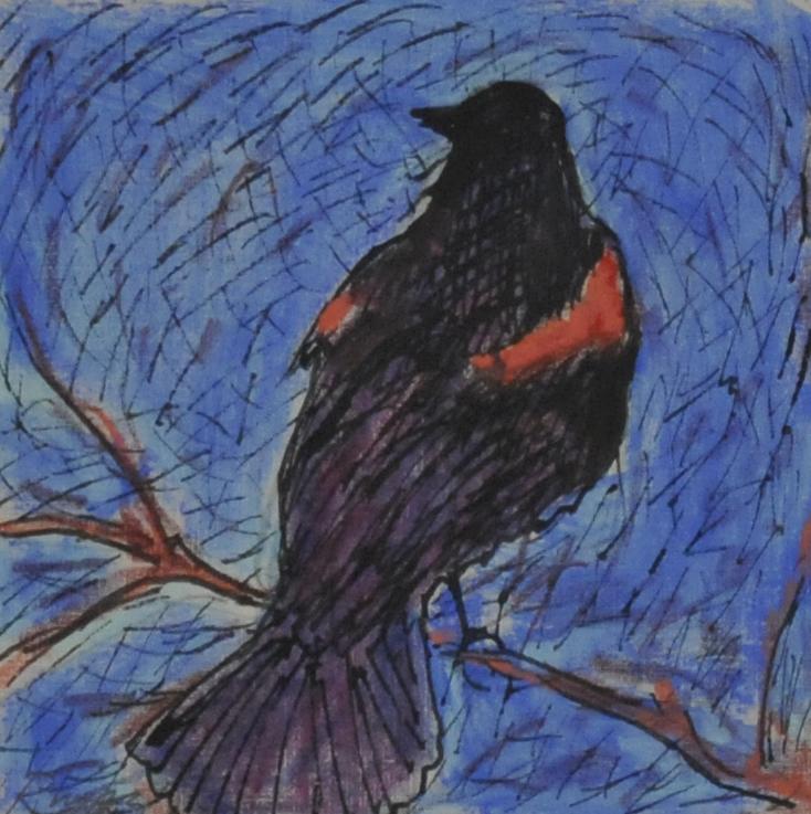 Bird Sketch