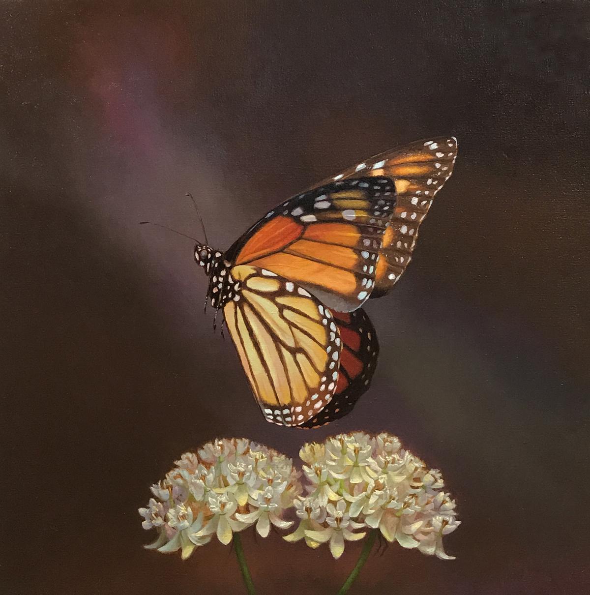 Monarch, Texas Millweed