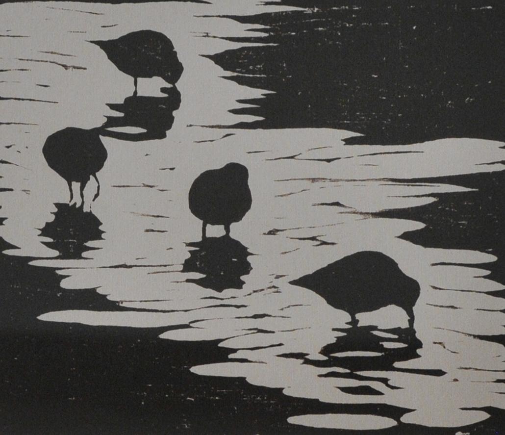 Shorebirds at Dusk