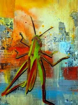 Grasshopper01_01web.jpg