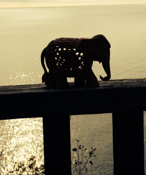 Photo by Elephant Rock retreat participant