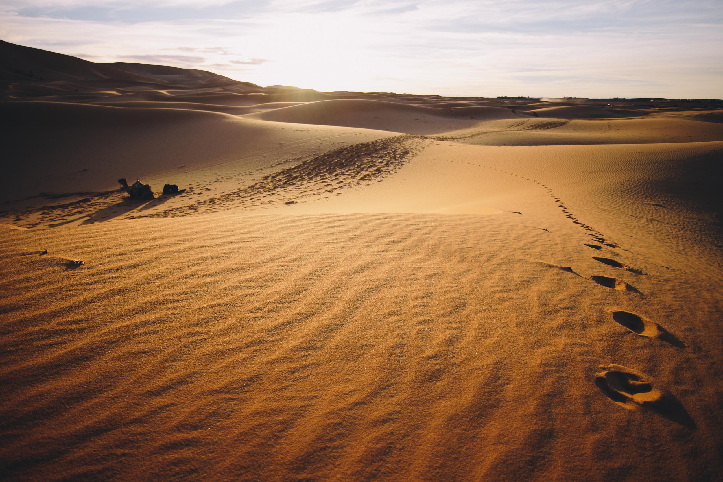 Saharan Footprints