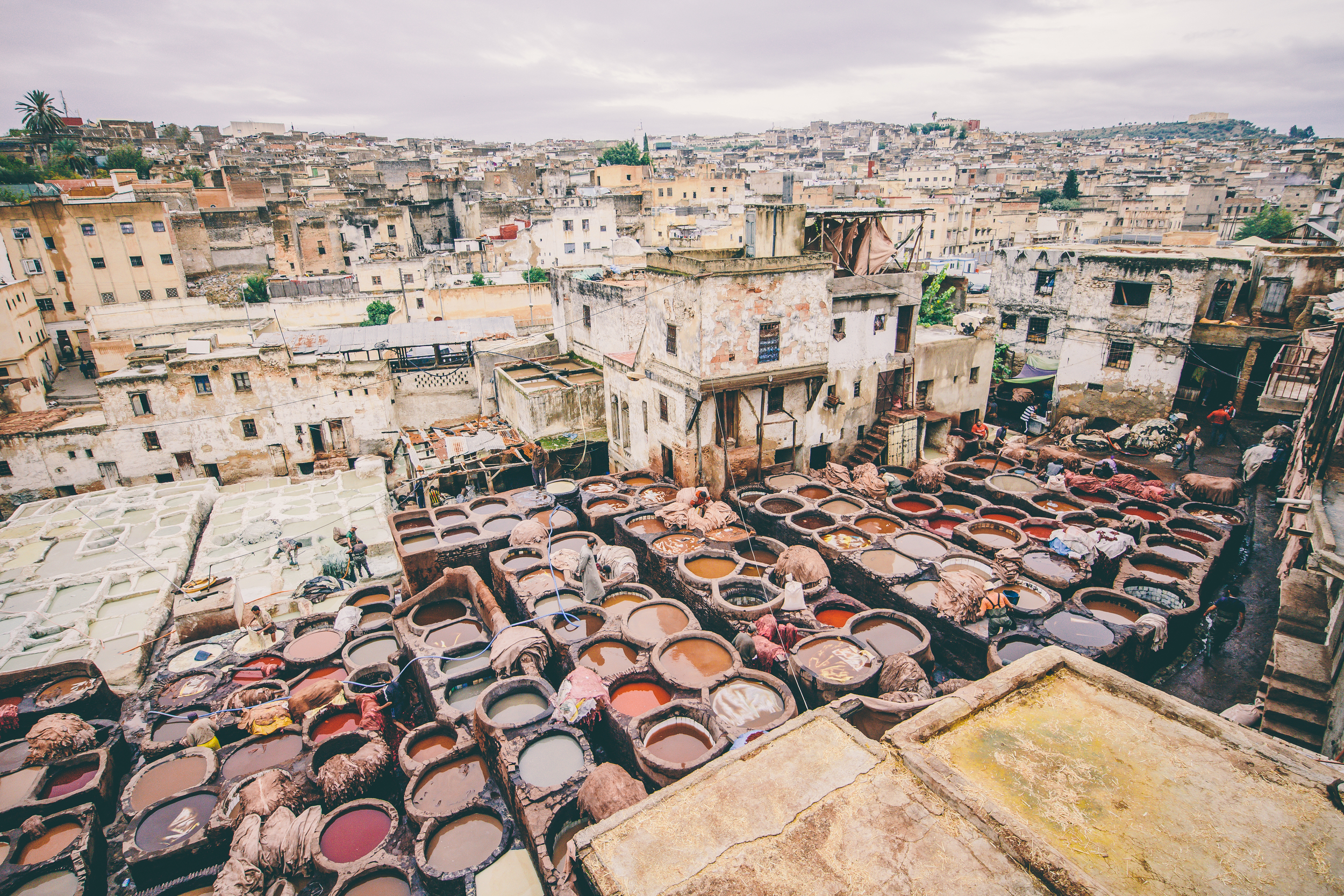 Leather Tannery, Fes