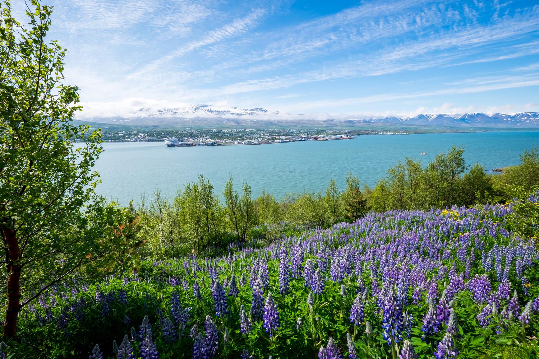 Iceland-PortfolioSquarespace-elliothaney (72 of 81).jpg