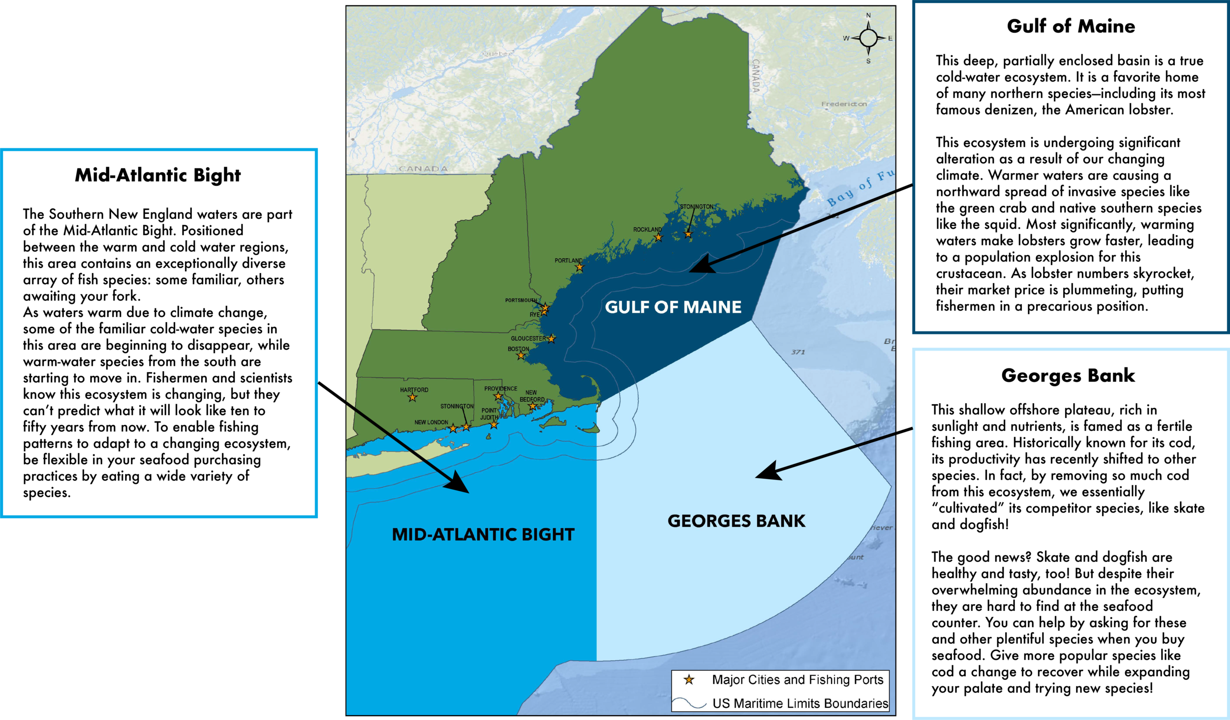 New England Ecosystems — Eating with the Ecosystem