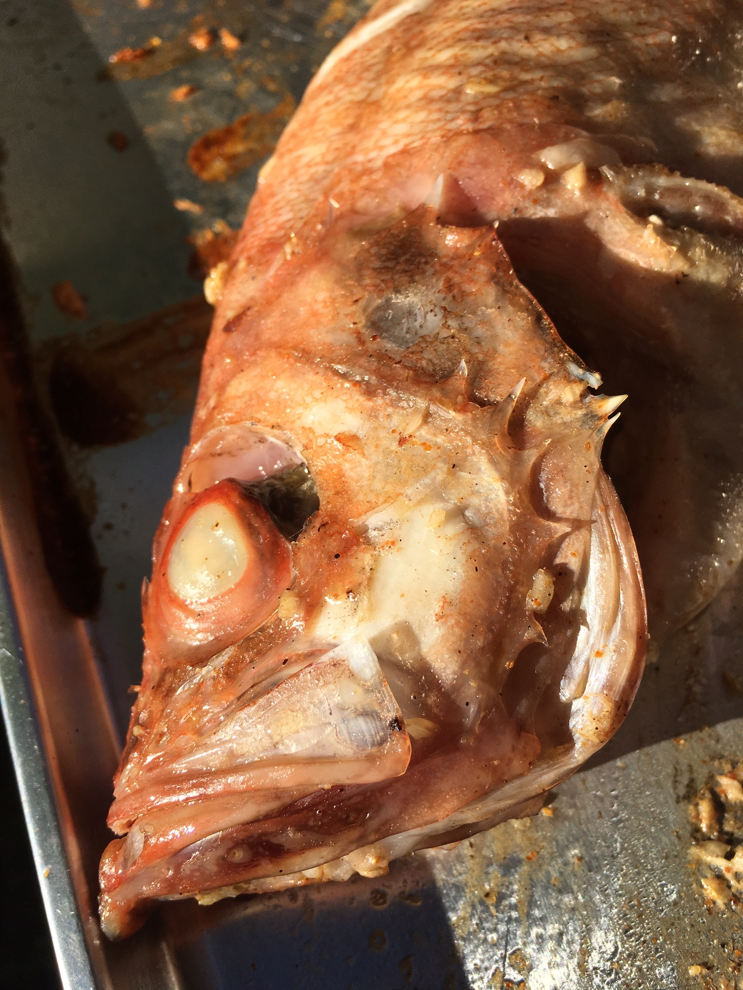 Grilled, Savory Acadian Red Fish; scary looking, but the taste is nothing to be afraid of!