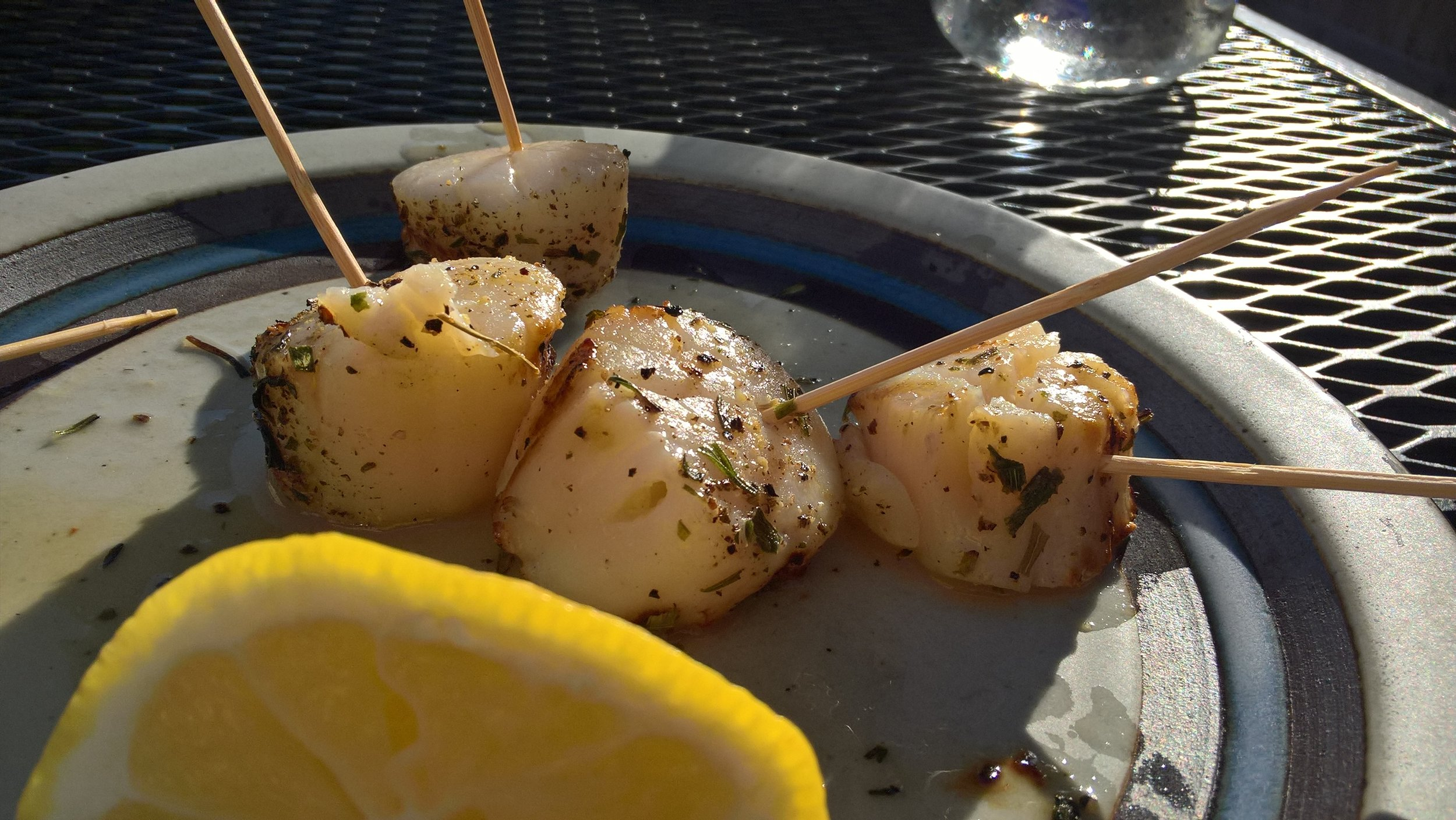 Grilled scallops with basil and terragon.