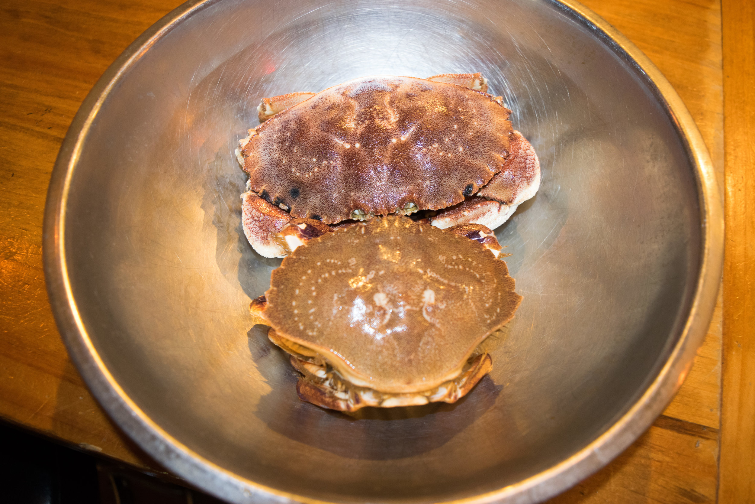 Jonah crab (top) &Sand crab (bottom)
