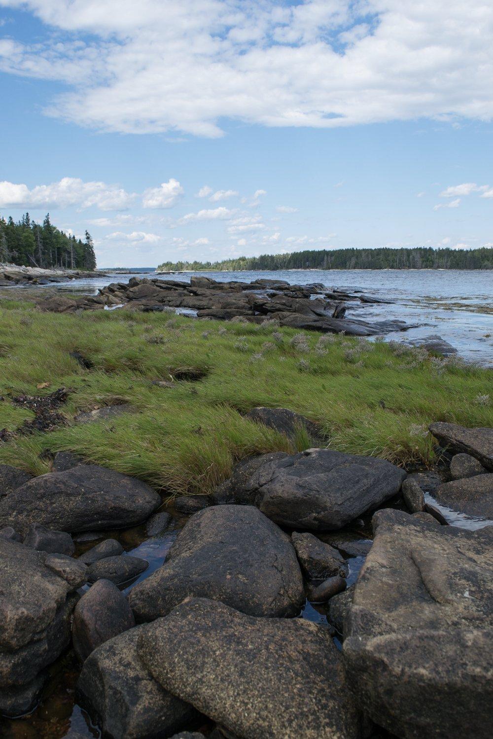 Maine Coast.jpg