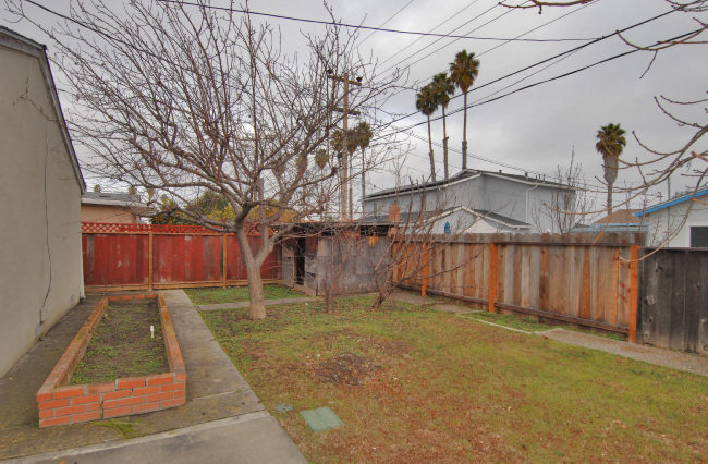 Back-yard1.jpg