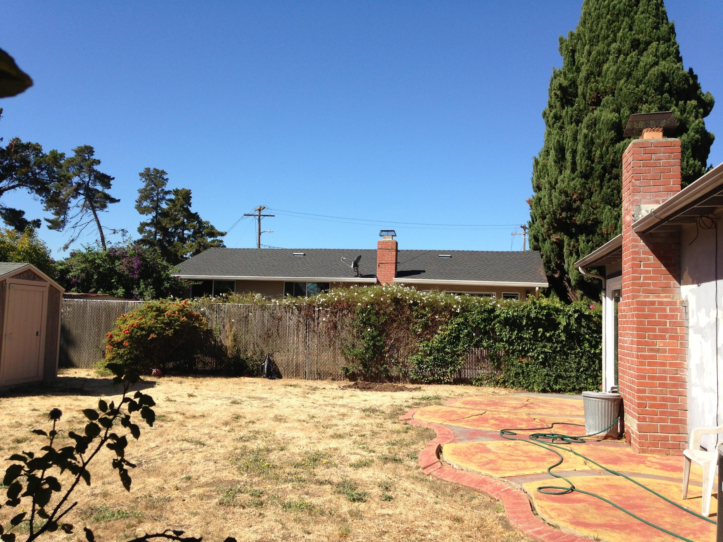 Backyard view 3.JPG
