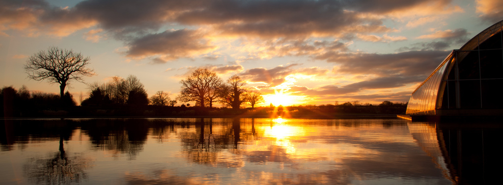 Sunset 01_cropped.jpg