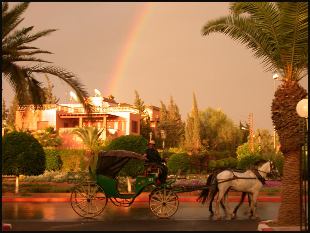 """09. """"Rainbow Cart"""""""