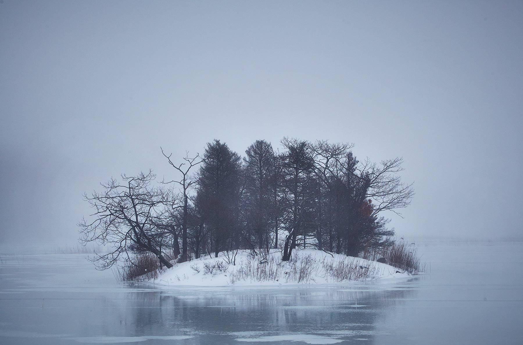 """56. """"Winter Light"""""""