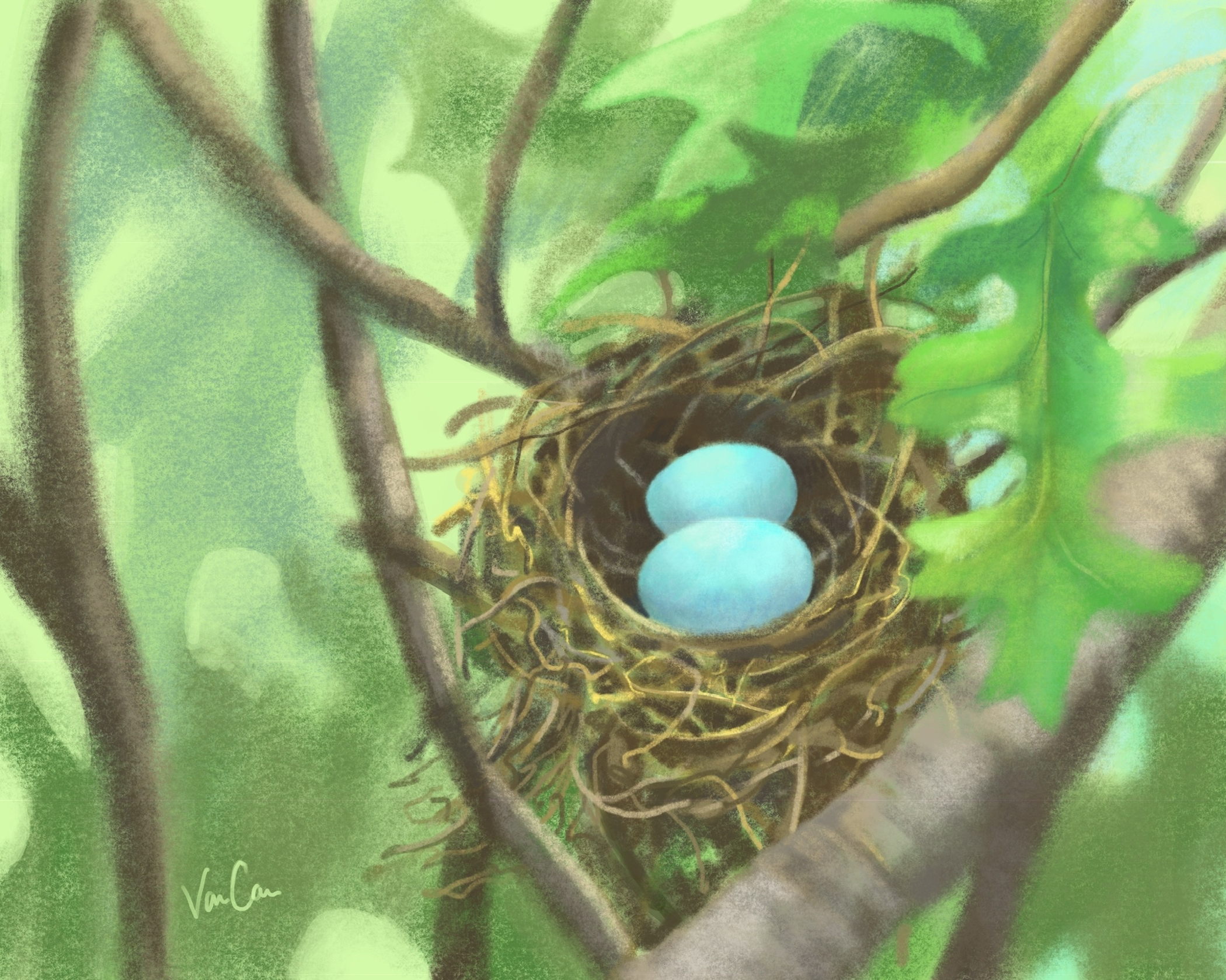 Robins Egg Bird Nest Painting