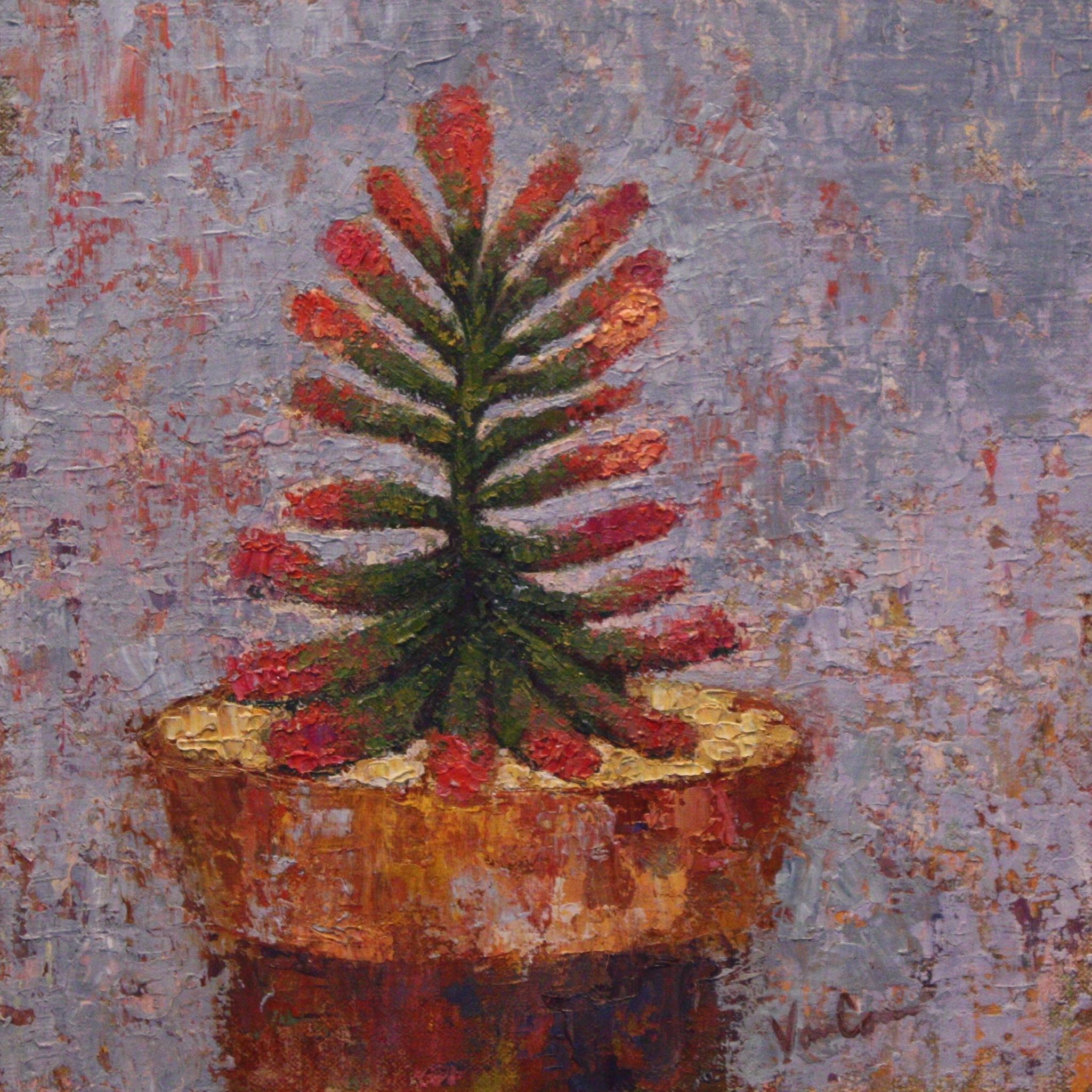 Succulent 5
