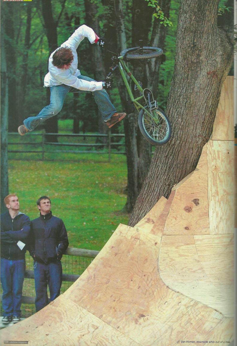 Van tree whip