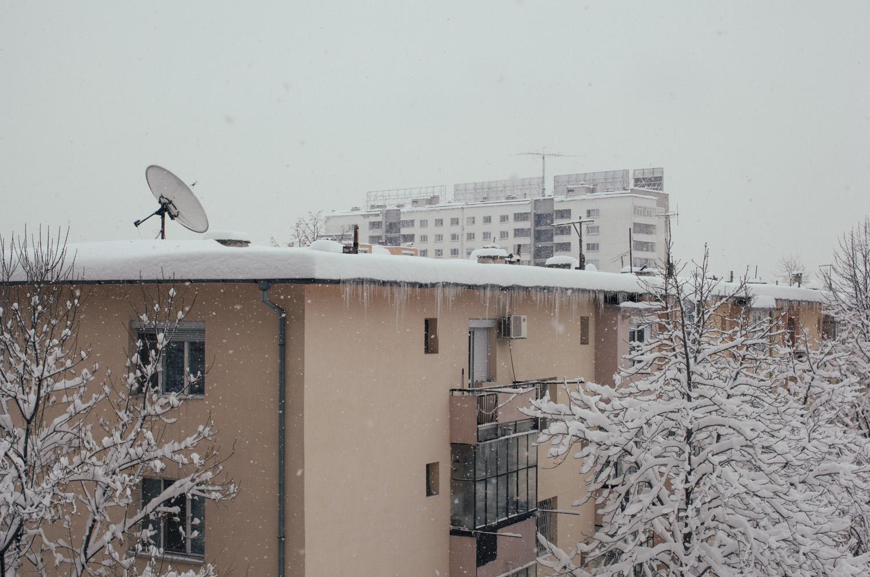feb-2012-1862.jpg