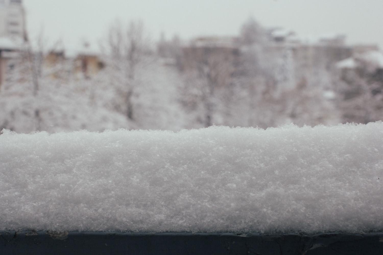 feb-2012-1864.jpg