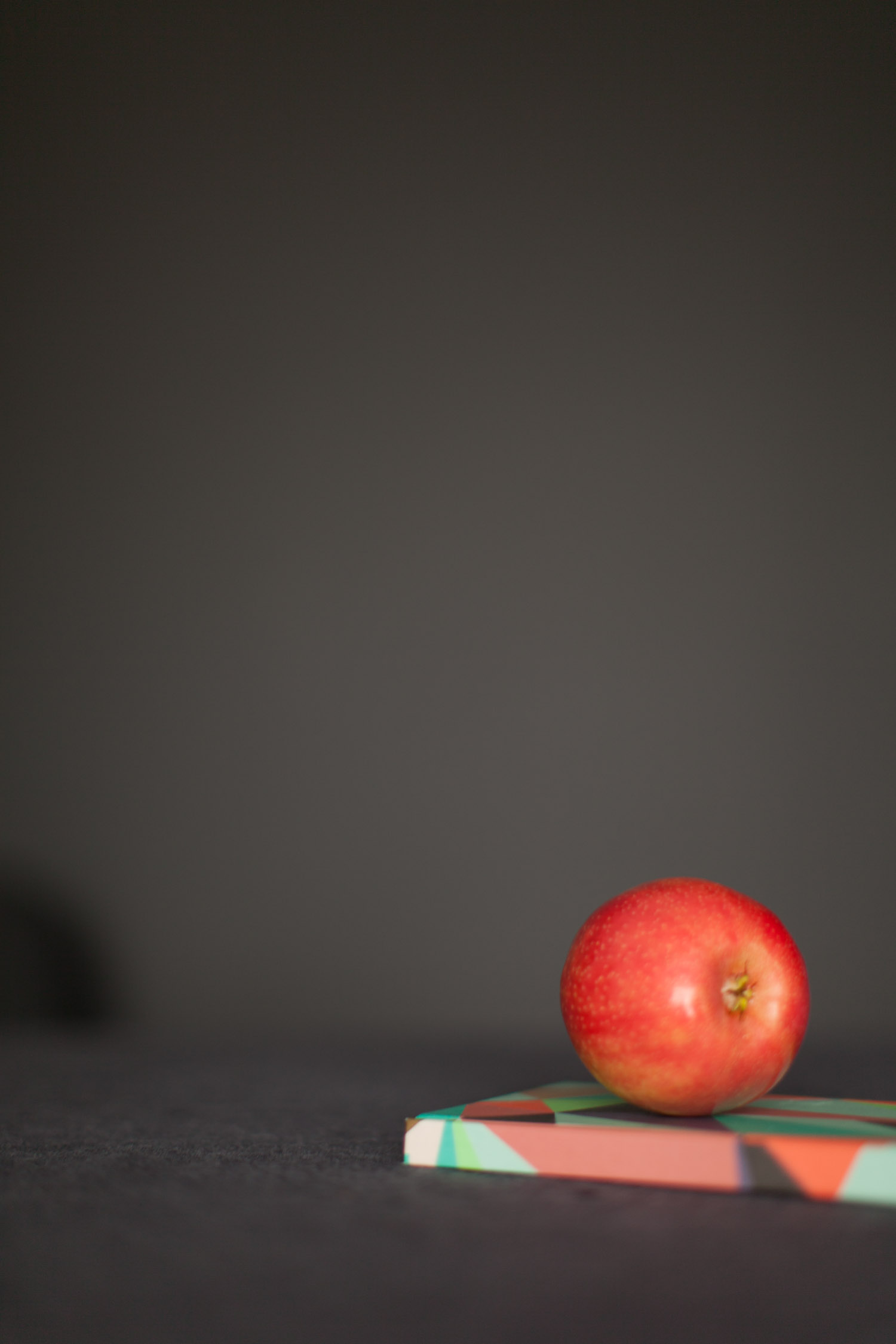 AppleNotebook-9138.jpg