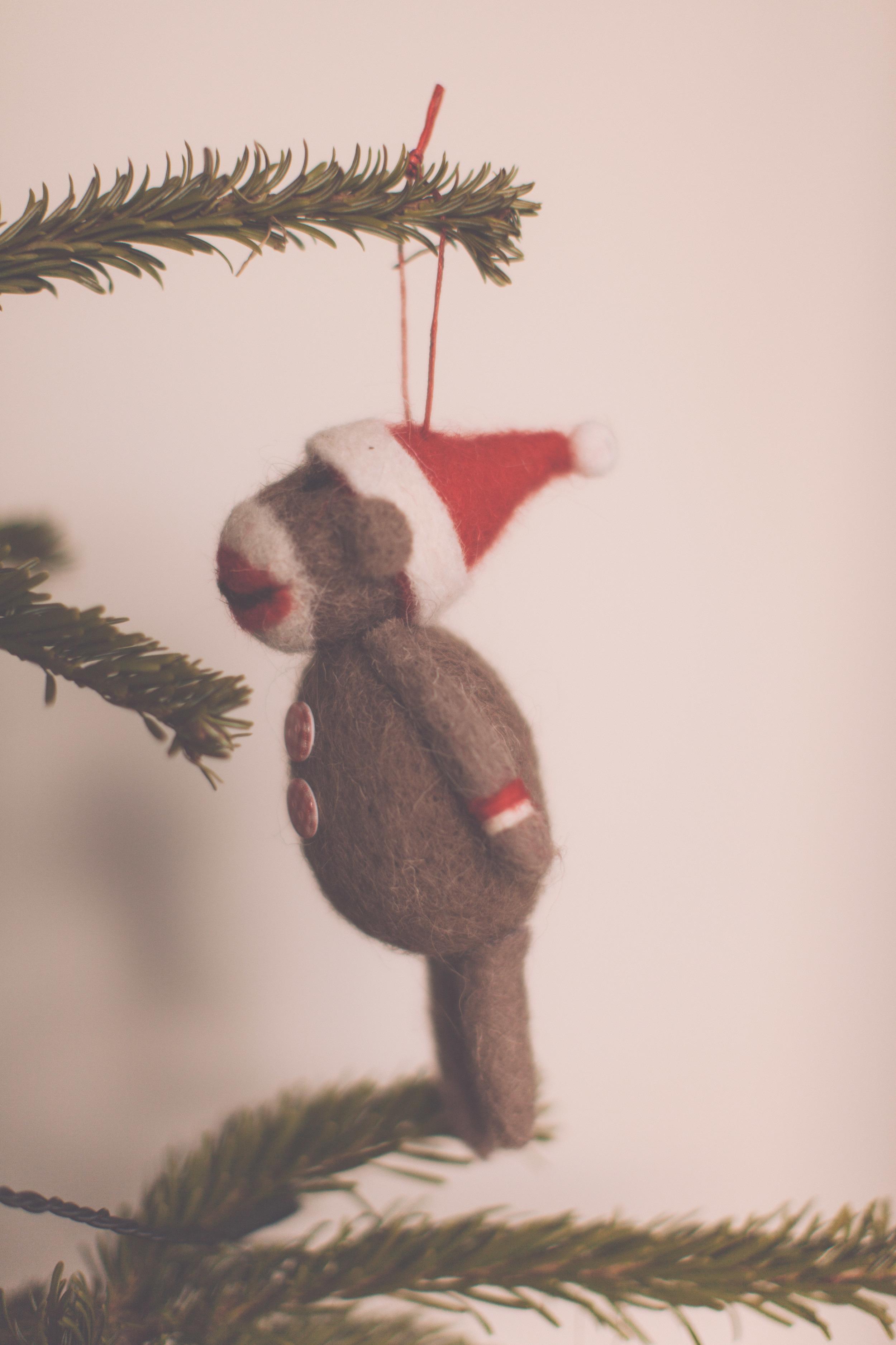 ChristmasMorning-8215.jpg