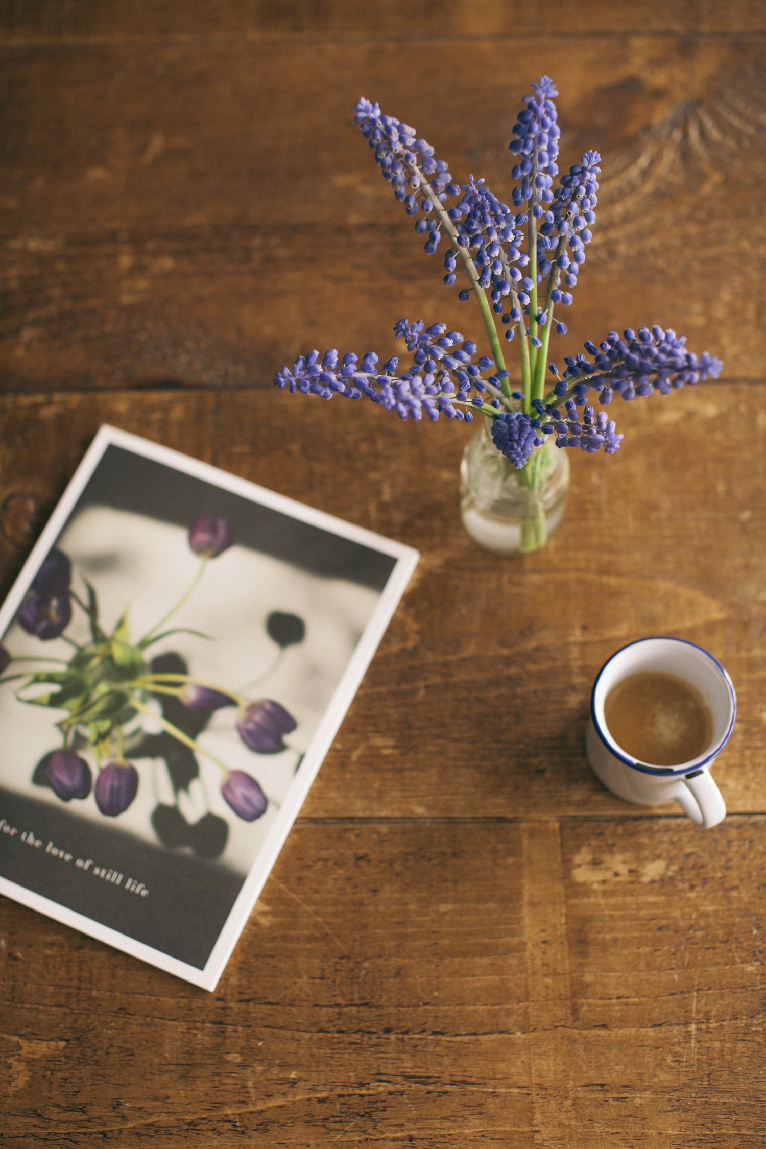book_cover-3653.jpg