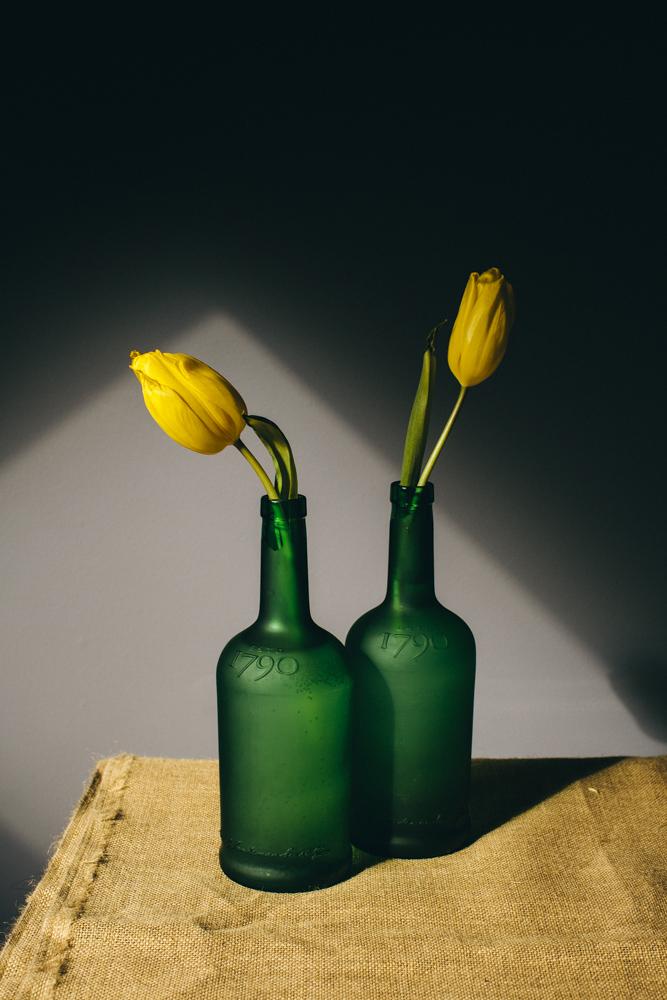 Tulips-3243.JPG